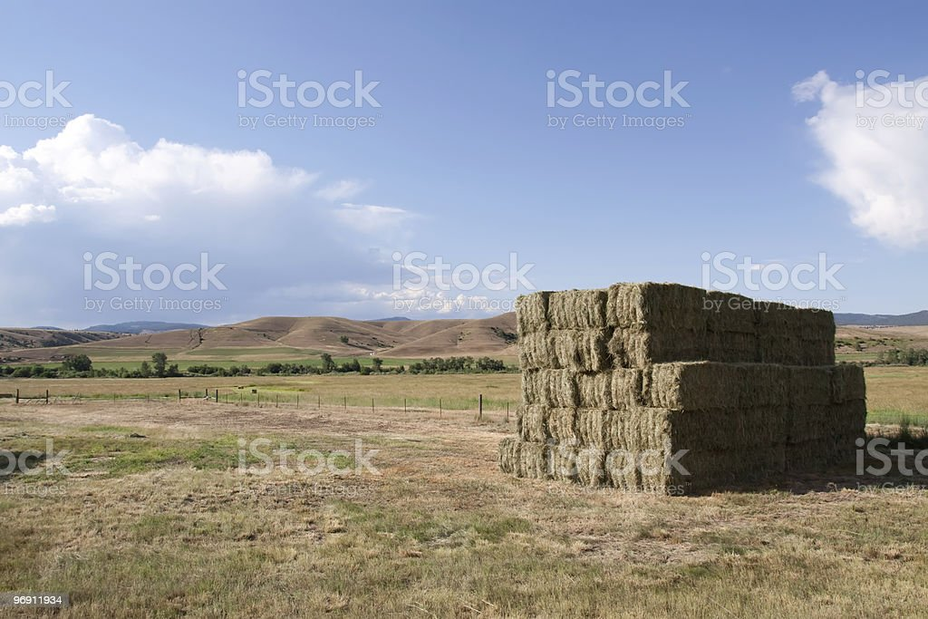 Haystacks on Idaho farmland royalty-free stock photo