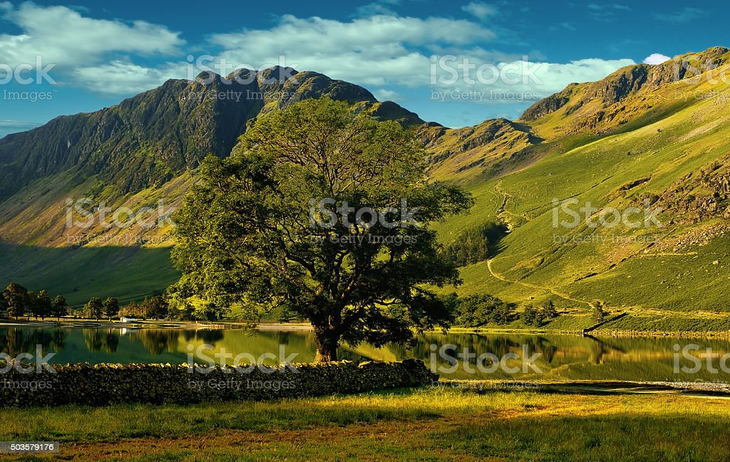 Haystacks. The path up to The Haystacks on the shore of Buttermere in the English Lake District. Buttermere Stock Photo
