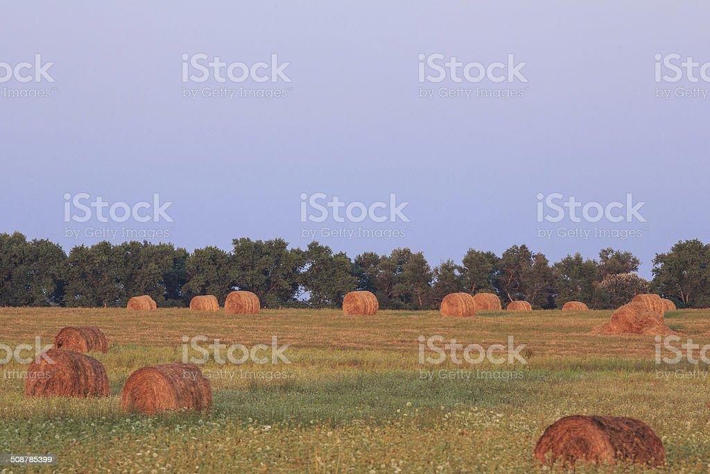 haystacks stock photo