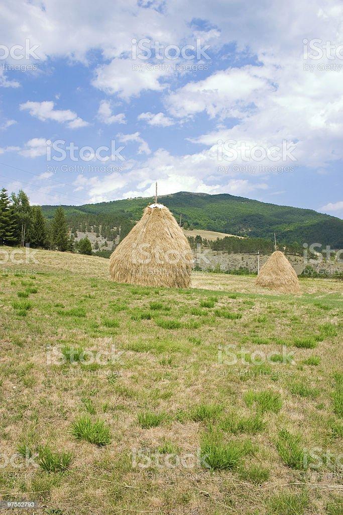 Haystacks photo libre de droits