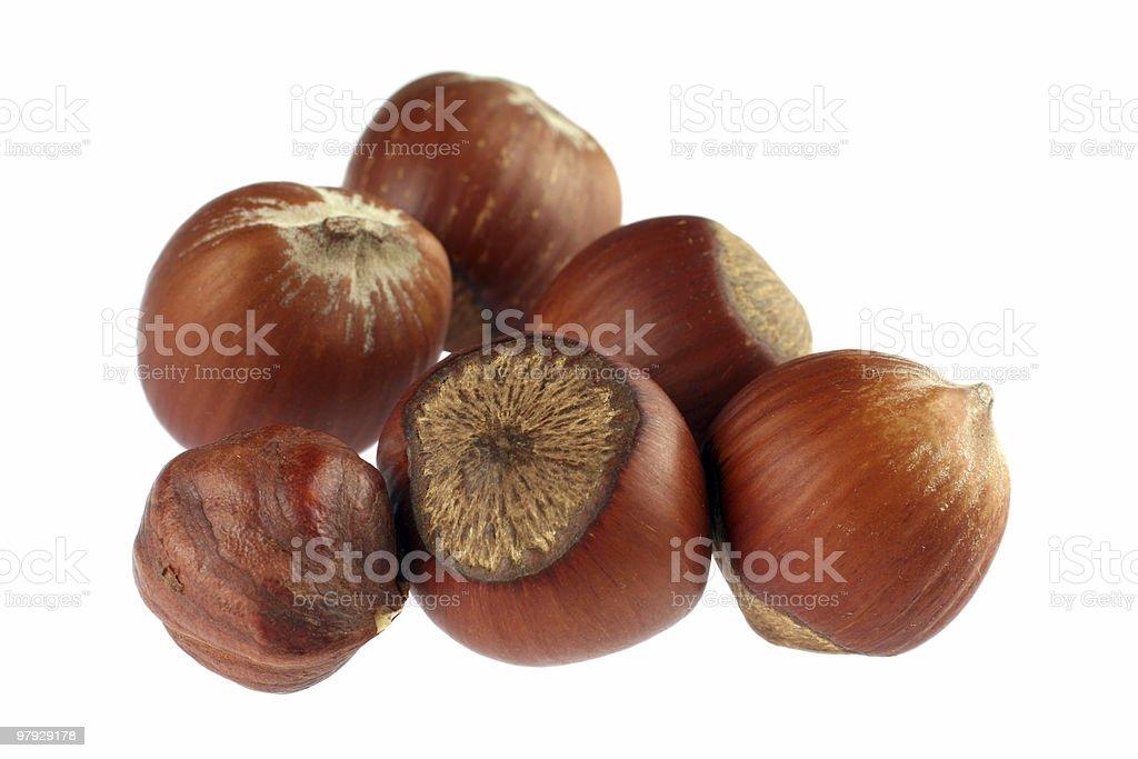 Hazel nut detail royalty-free stock photo