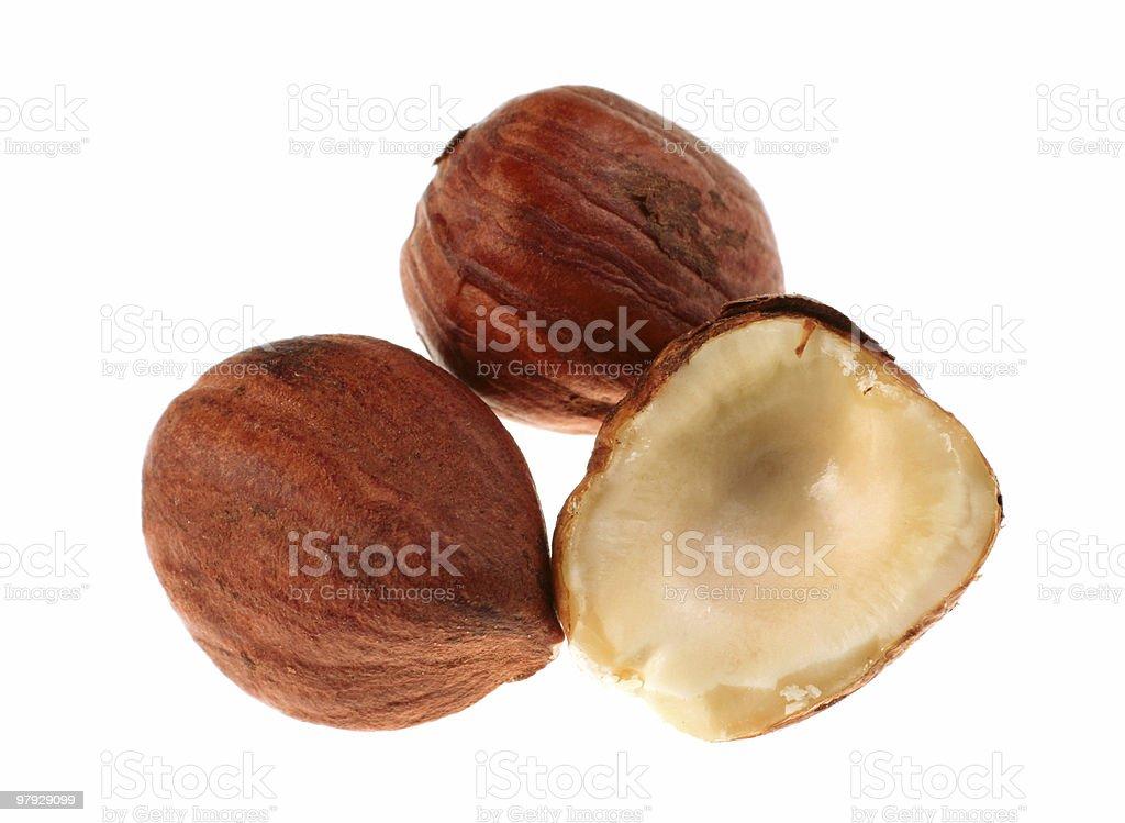 Hazel nut group royalty-free stock photo