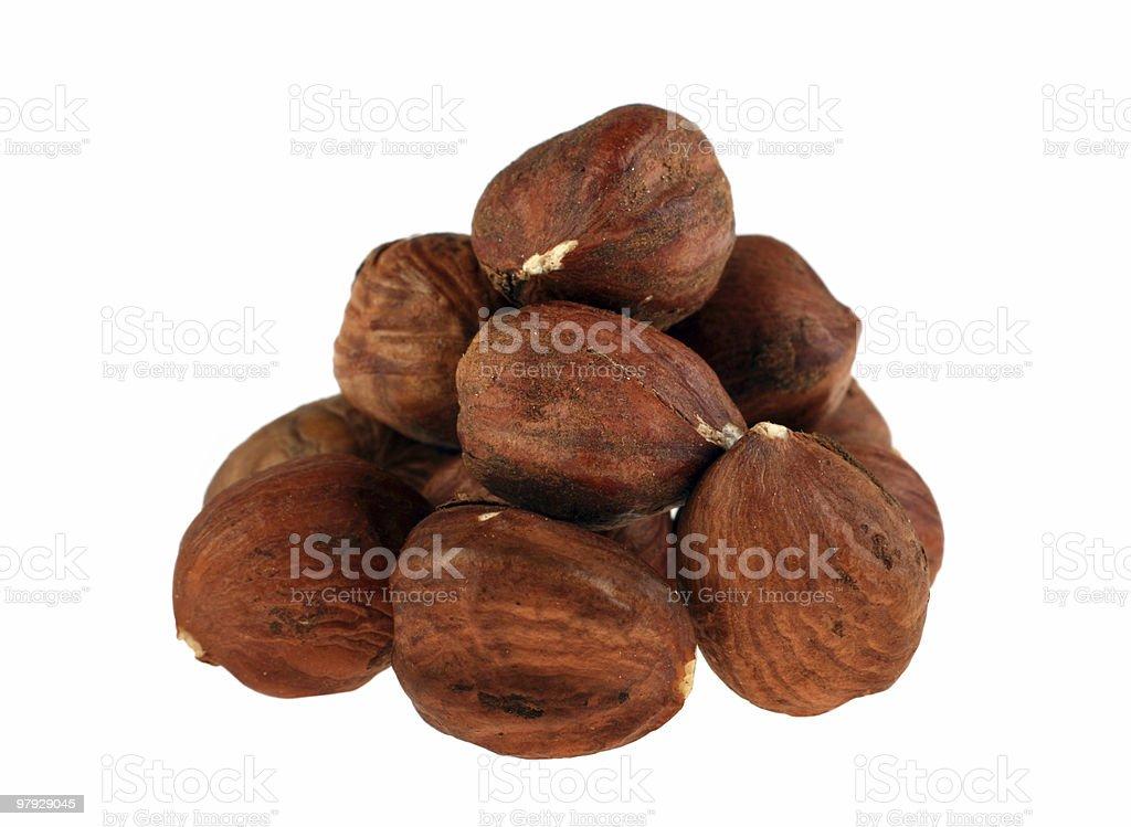 Hazel nut royalty-free stock photo