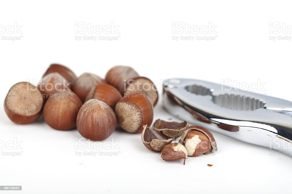 Hazelnut Collection royalty-free stock photo