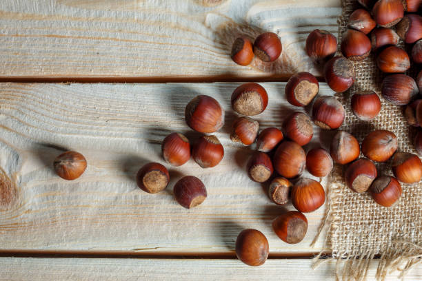 hazelnut lies on a wooden background of large nuts. stock photo