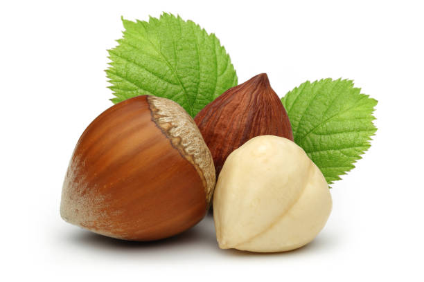 hazelnuts and leaves isolated on white background - nocciola foto e immagini stock