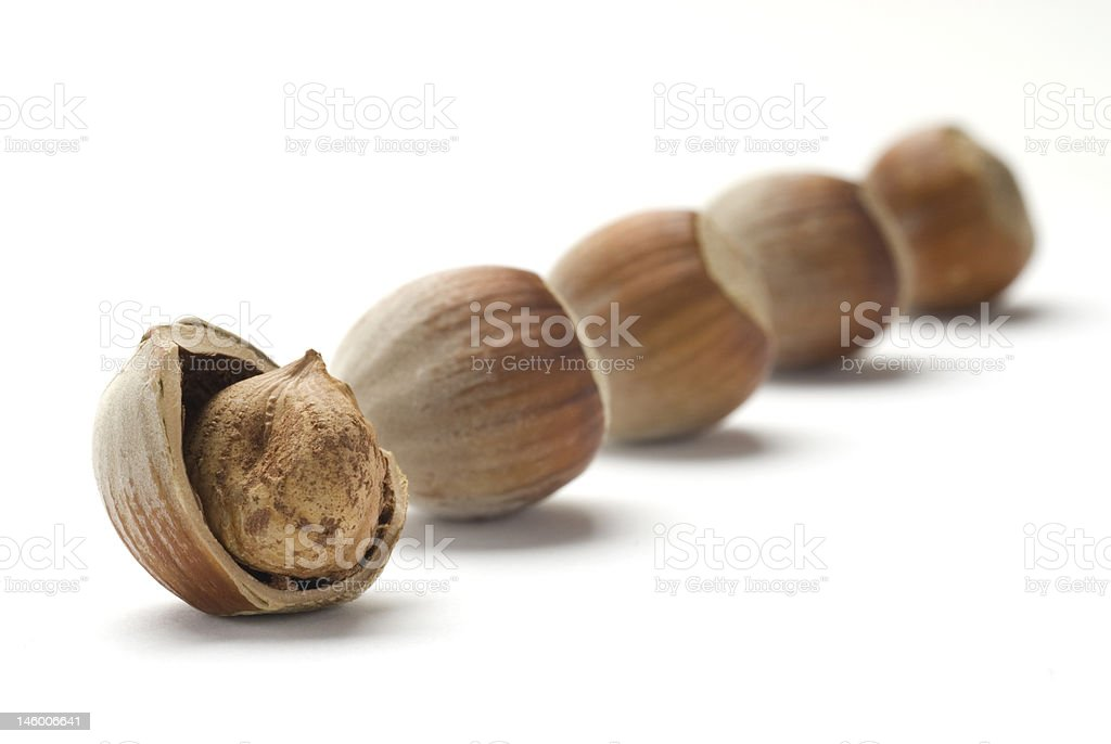 Hazelnuts diagonal royalty-free stock photo