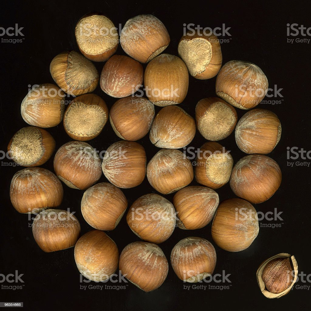 hazelnuts in shells on black royalty-free stock photo