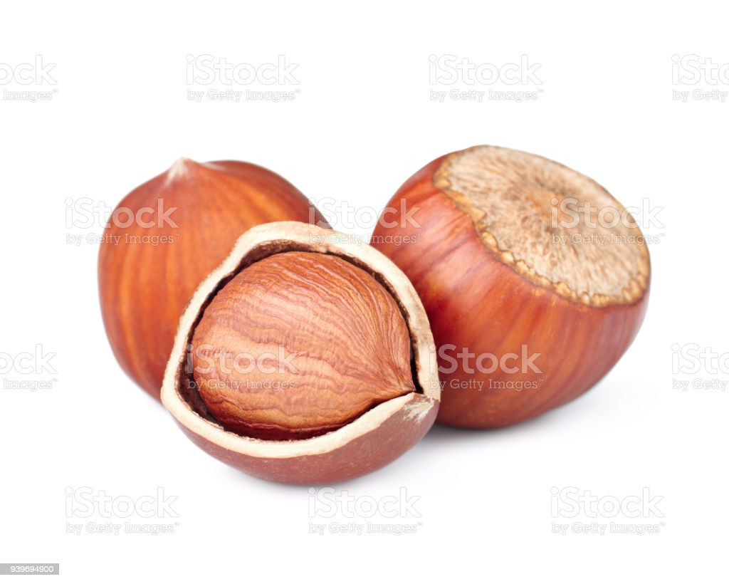 Hazelnuts Isolated On White Background Stock Photo Download Image Now