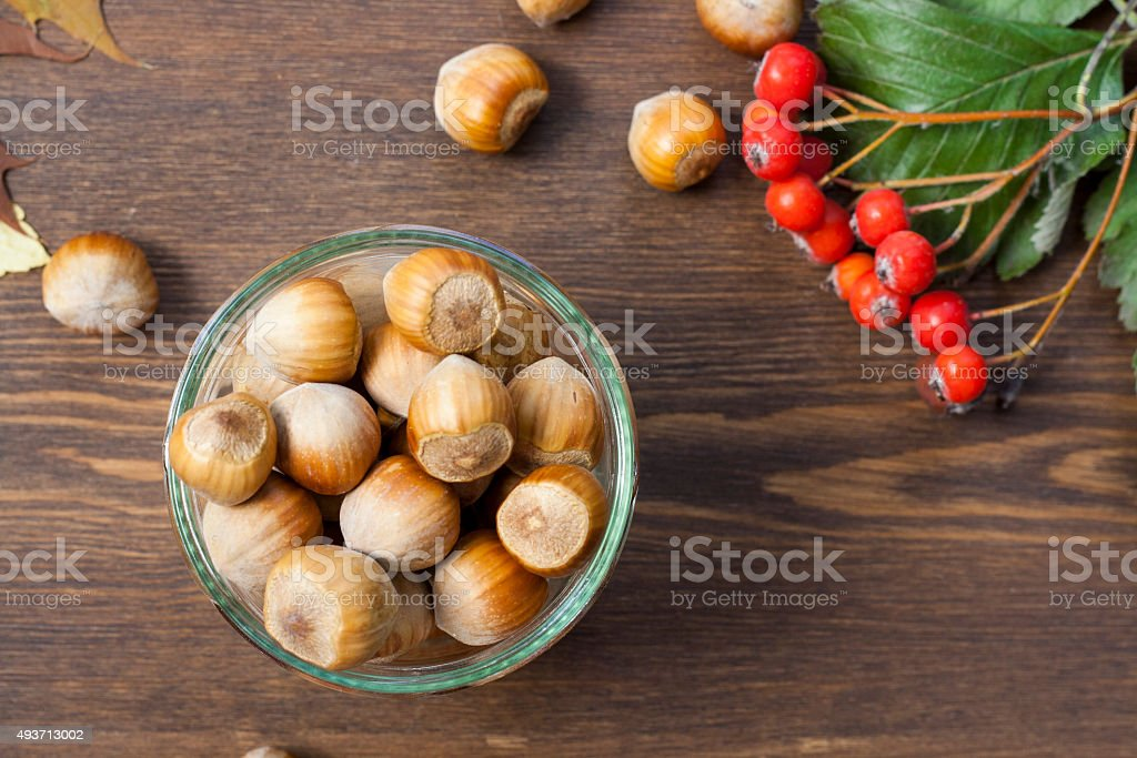 Hazelnuts, mountain ash and autumn leaves royalty-free stock photo