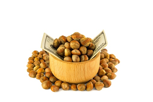 Hazelnuts Nuts Of Turkish Hazel The Concept Of Hazelnut Nuts As Money Earnings Of Dolars Isolate On White Background Stock Photo - Download Image Now