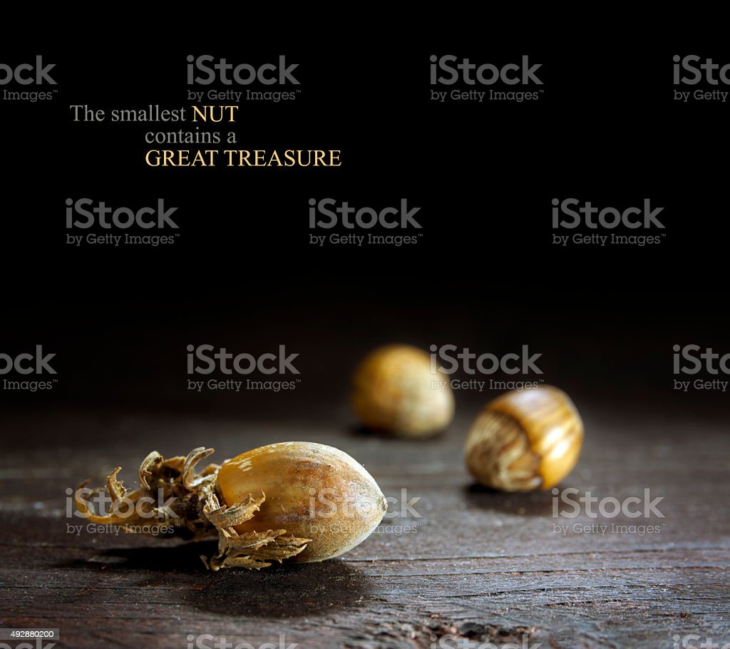 hazelnuts on dark wood, concept to detect potential goods, sampl stock photo