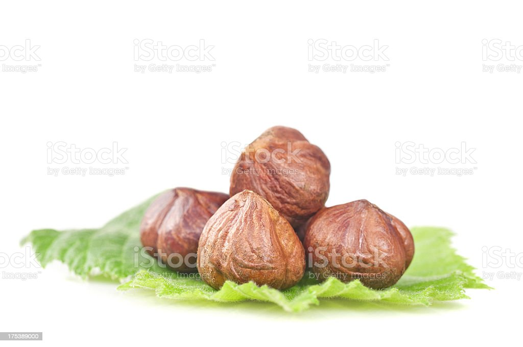 Hazelnuts on leaf royalty-free stock photo