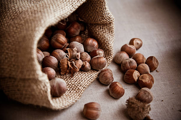 Hazelnuts sack stock photo