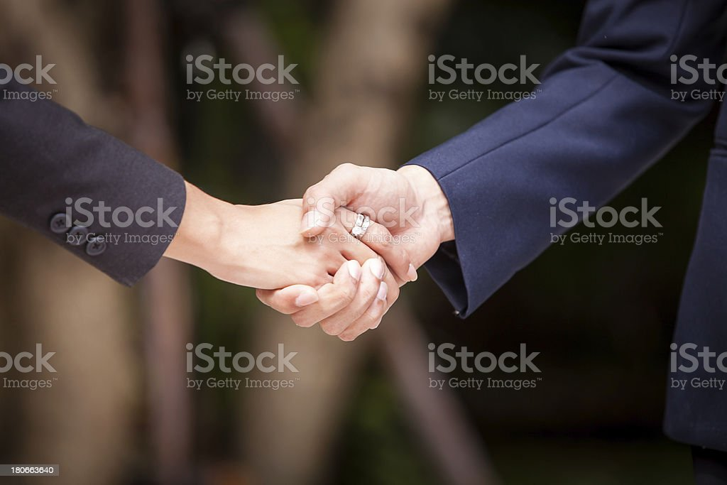HD:Businesspeople have same agreement after discussion. royalty-free stock photo
