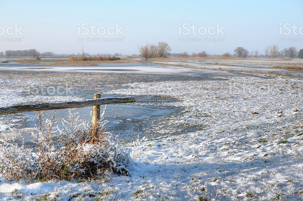 hdr image of snowy meadow havel river ( Brandenburg Germany) stock photo