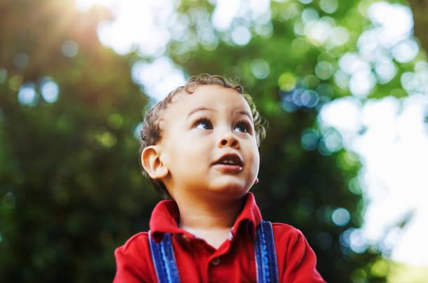 Er ist so ein neugieriger kleiner Junge – Foto