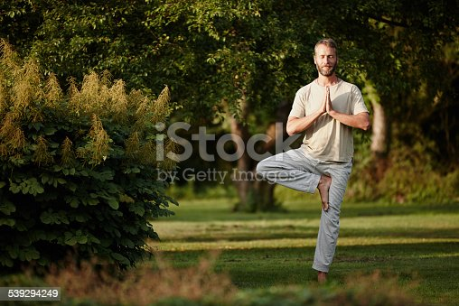 Shot of a handsome mature man enjoying a yoga session in naturehttp://195.154.178.81/DATA/i_collage/pu/shoots/785281.jpg