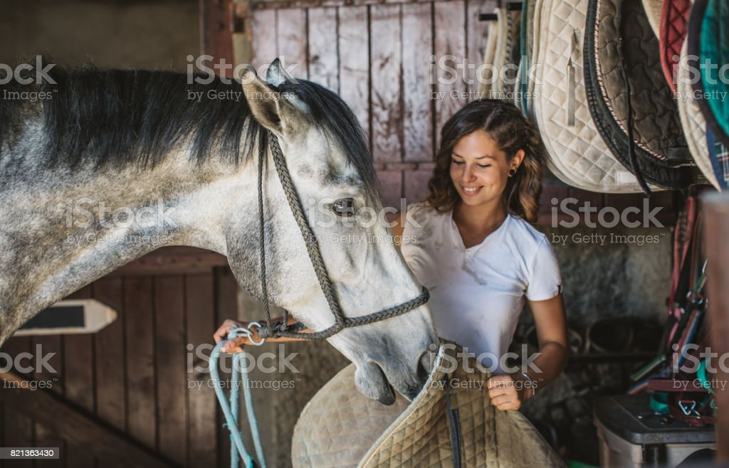 Woman prepare horse for riding training. She cuddle beautiful animal...
