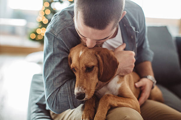 He really is man's best friend stock photo