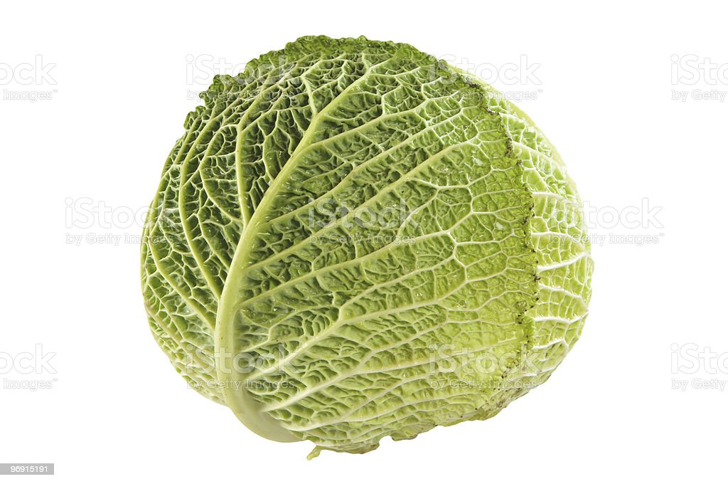 Head cabbage royalty-free stock photo