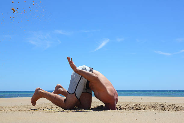 Head in the Sand In denial. head in the sand stock pictures, royalty-free photos & images