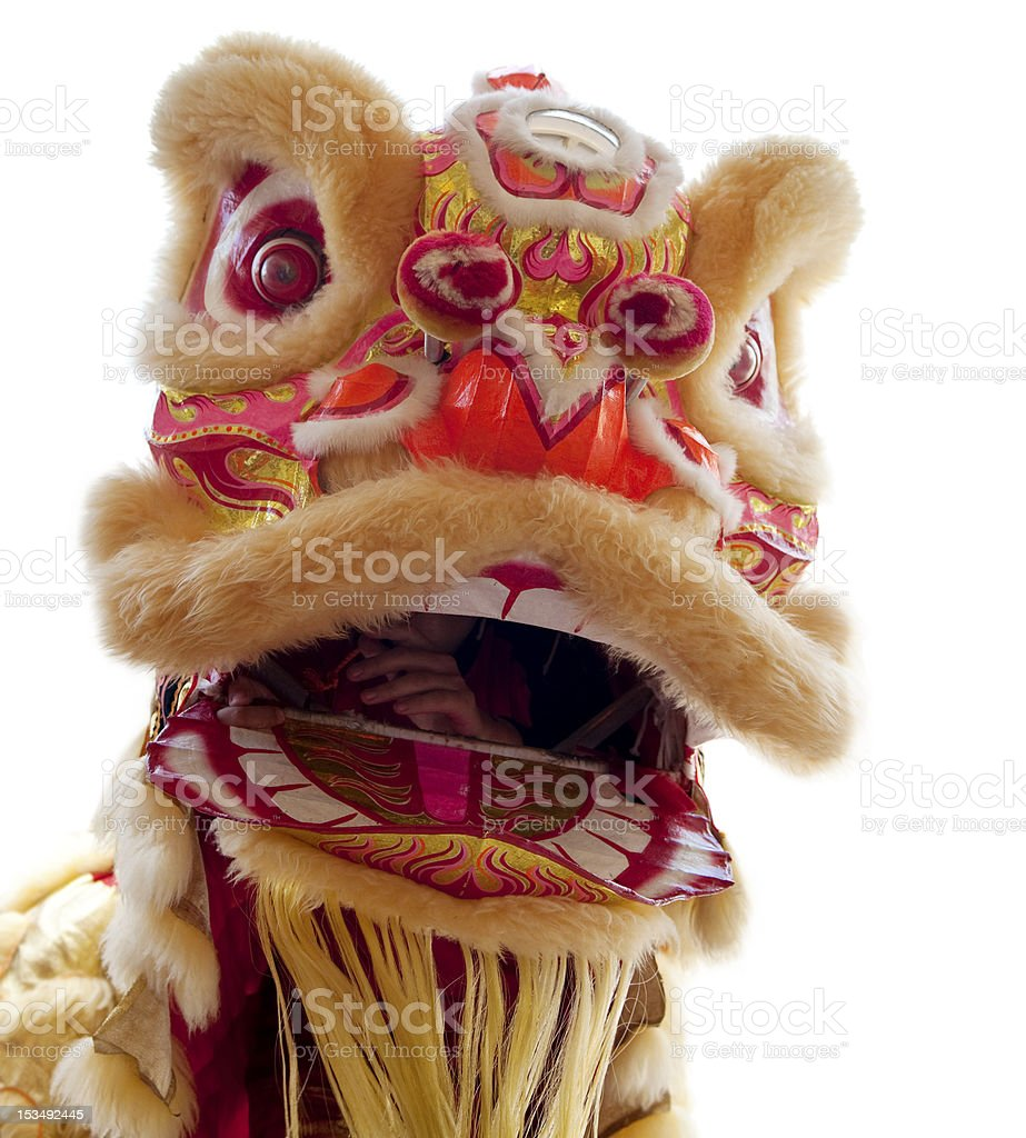 Head of a Chinese Dragon on a white background stock photo