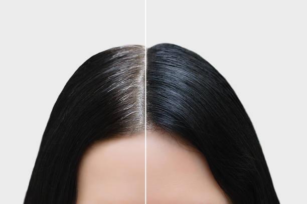 siyah gri saçlı bir kızın başı. saç boyama. öncesi ve sonrası. close. - kır saç stok fotoğraflar ve resimler