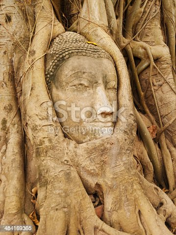 Buddha figure overgrown by fig roots in Wat Mahatat in Ayutthaya historic park, Thailand. Only the head has remained. This ancient temple was built during the 14th century.