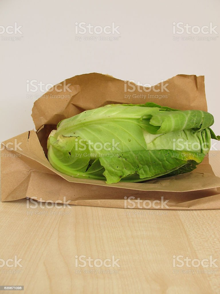 Head of cone cabbage in paper bag stock photo