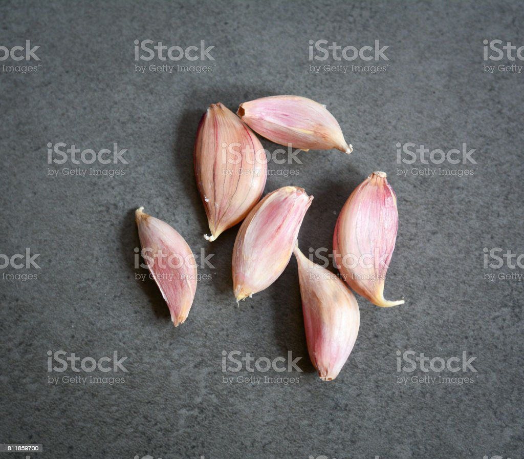 Head of garlic stock photo