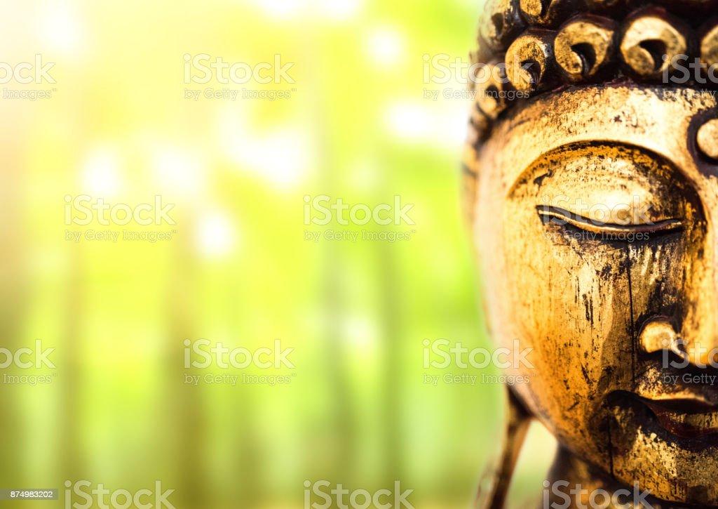 Leiter der goldene Buddha-Statue auf üppigen grünen Hintergrund – Foto