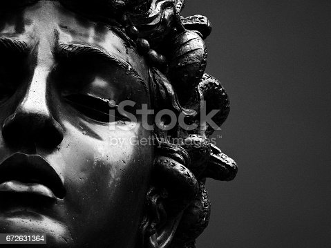 The head of Medusa held by Perseus.
