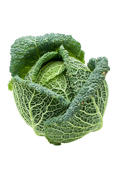 Head of ripe Savoy cabbage isolated stock photo