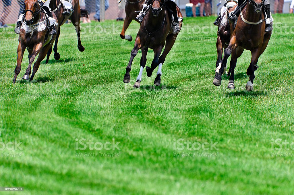 Head On Horse Racing on turf as they round a corner stock photo