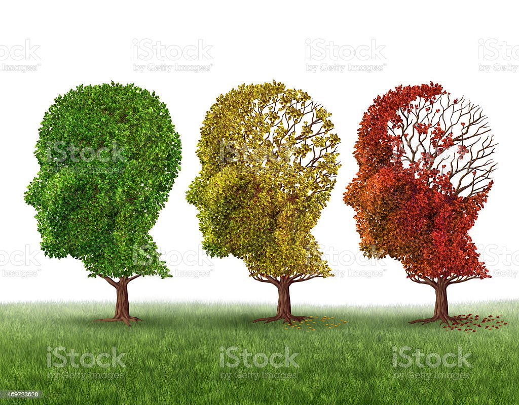Head shaped trees in fall progression. Memory loss concept stock photo