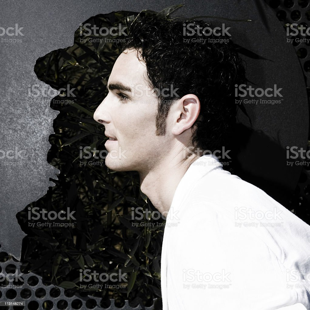 Head Shapes royalty-free stock photo