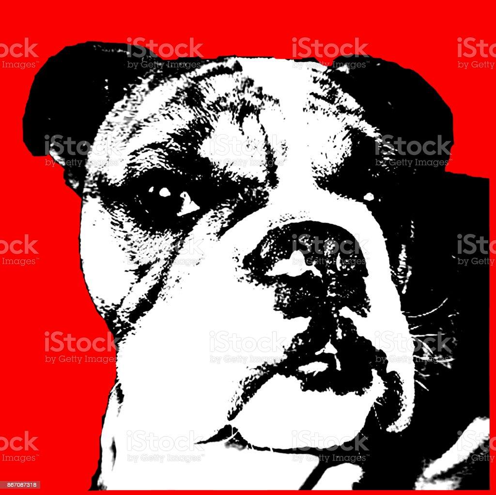 Head shot of beautiful Bulldog breed dog pop art stock photo