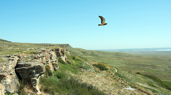 Head Smashed In Buffalo Jump Cliffs And Hawk Alberta Stock Photo - Download Image Now