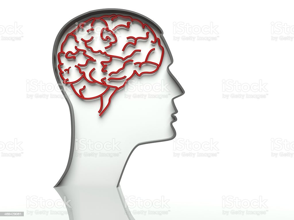 Head with brain on white background, text space stock photo