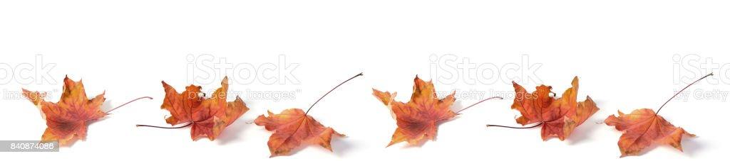 headline panorama autumn stock photo