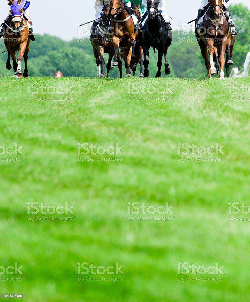 Head-On Horse Racing on turf stock photo