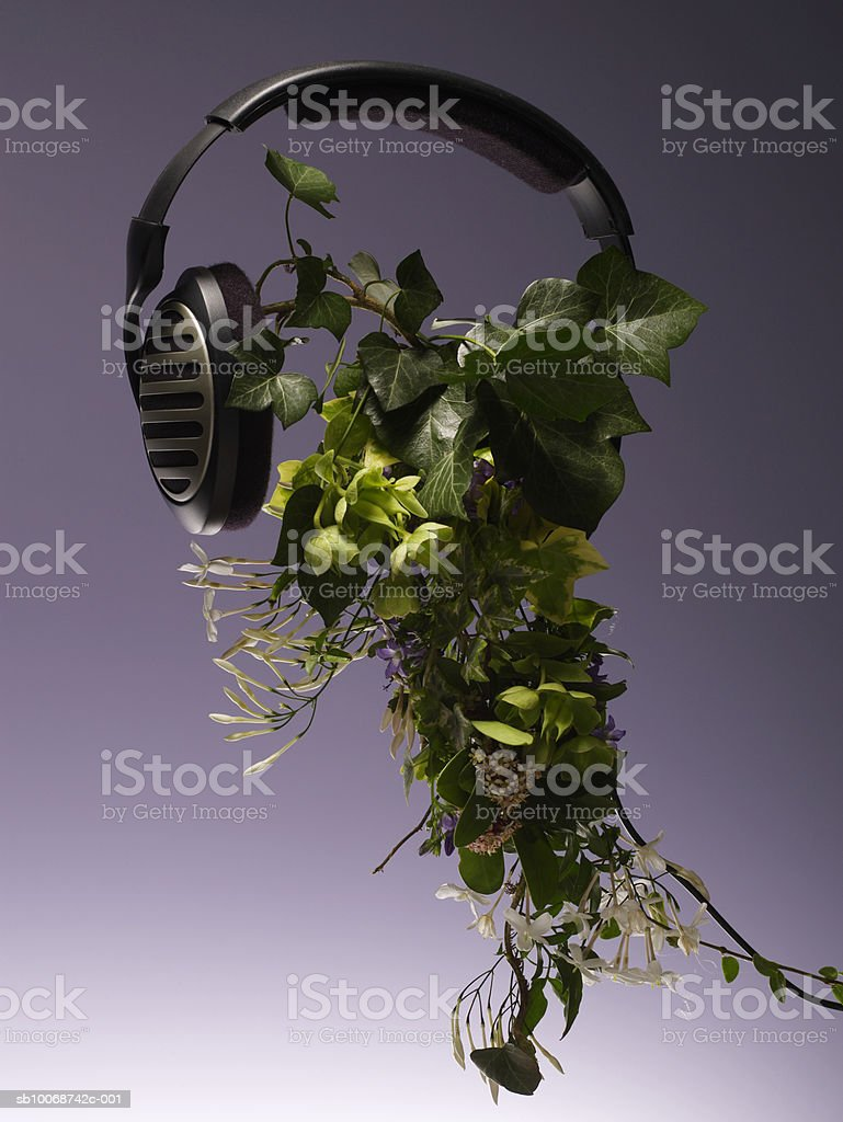 Headphones on leaves, close-up royalty-free stock photo