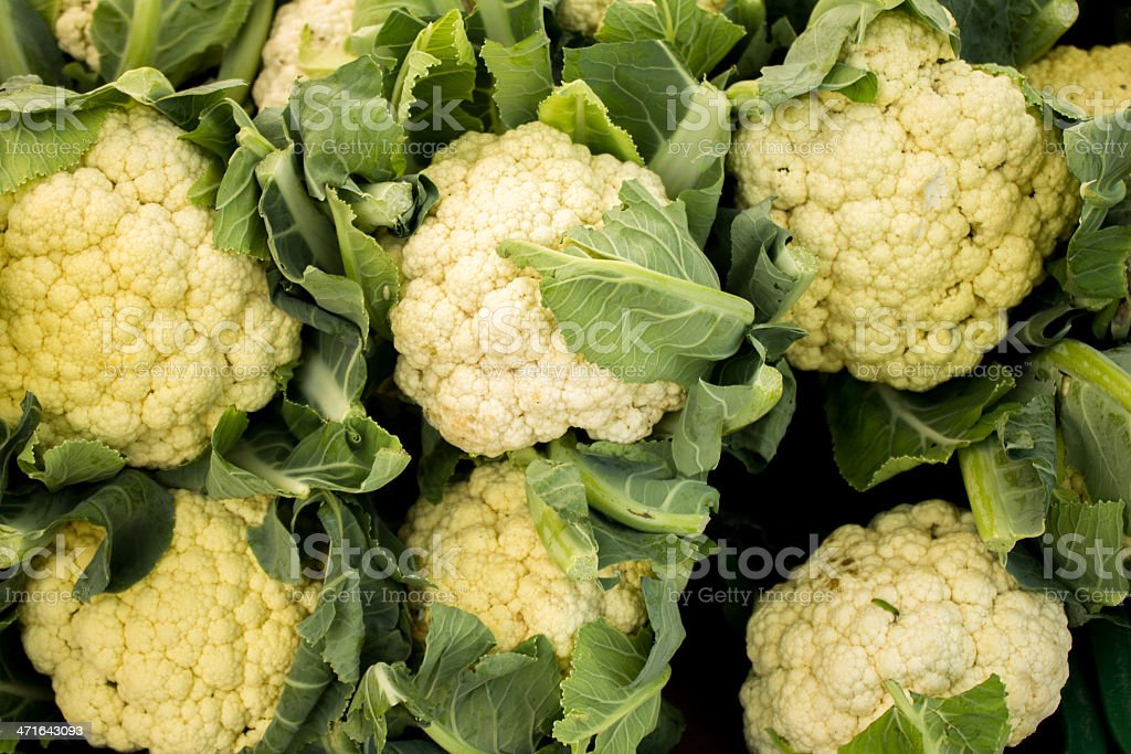 Heads of cauliflower royalty-free stock photo
