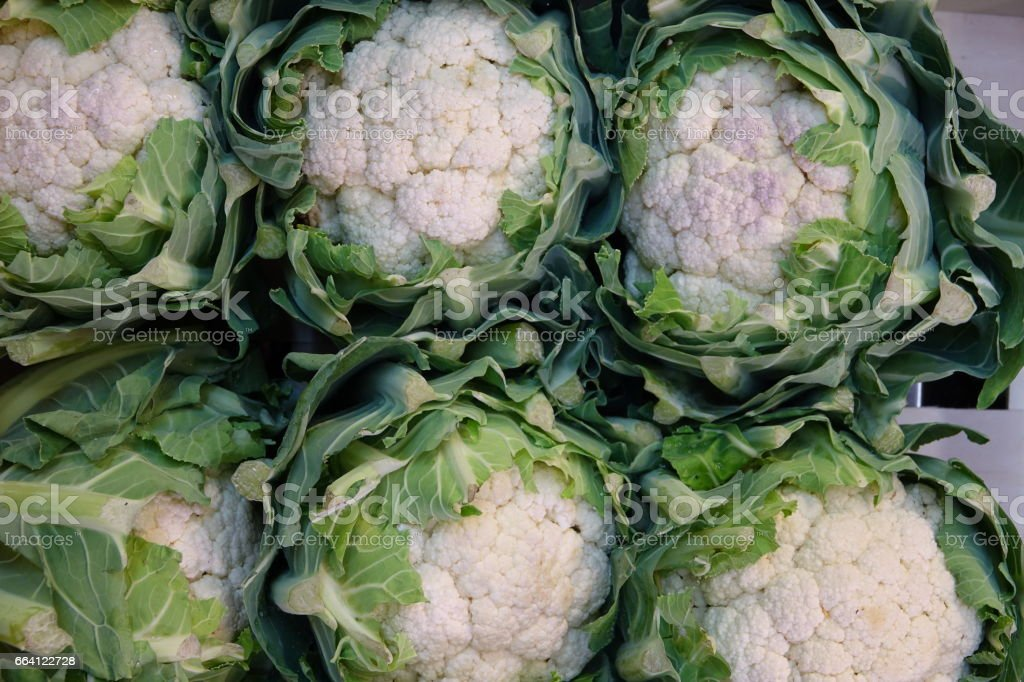 Heads of Cauliflower foto stock royalty-free