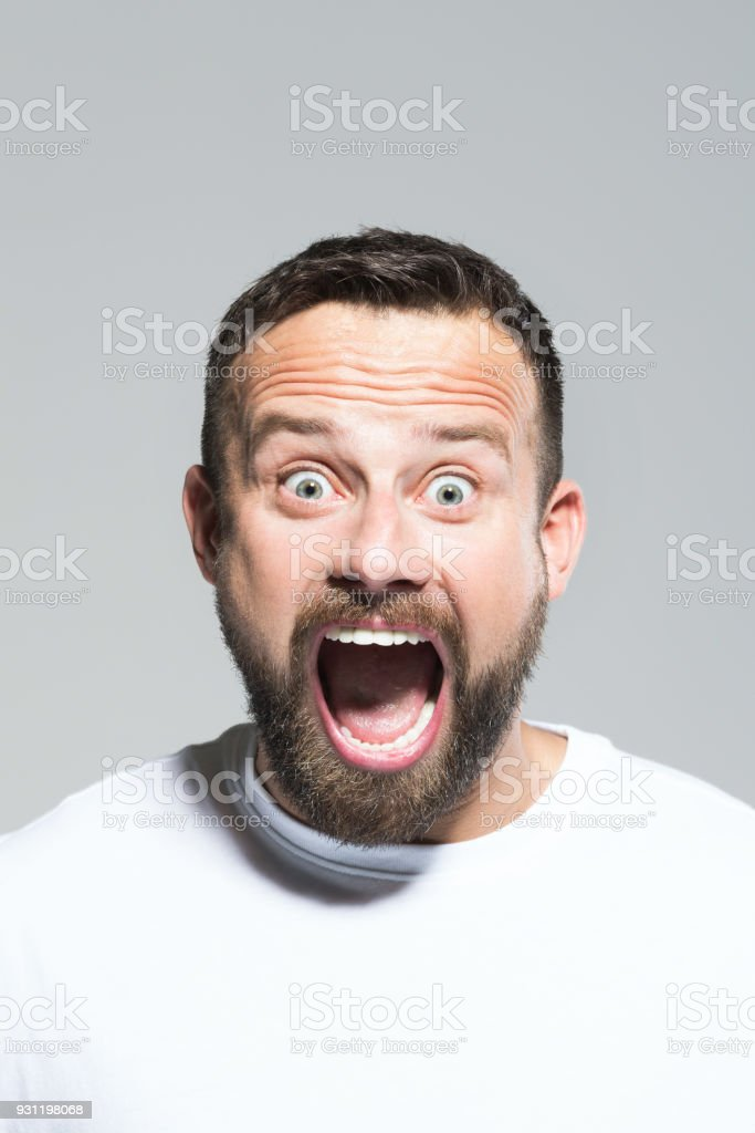 Headshot of shocked bearded young man, grey background Portrait of excited bearded young man lscreaming at camera. Headshot, grey background. 30-34 Years Stock Photo