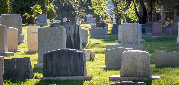 Headstones in a cemetery during the day