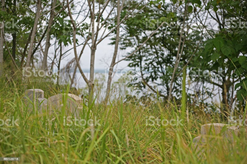 Headstones in the overgrown Chinese Cemetery stock photo