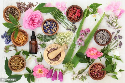 istock Healing Flowers and Herbs 653754684