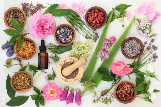 healing flowers and herbs - holistic medicine stock photos and pictures